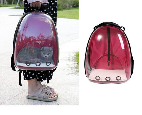 Pet backpack with clear window
