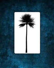 Palm Tree Tattoo.