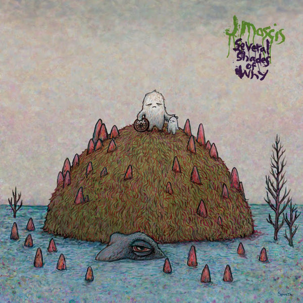 J Mascis album Several Shades Of Why on CD from Bingo Merch