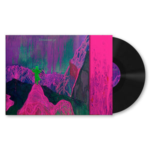 Dinosaur Jr. Give a Glimpse of What Yer Not LP LP- Bingo Merch Official Merchandise Shop Official
