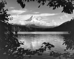 3171A Mt Hood Lost Lake