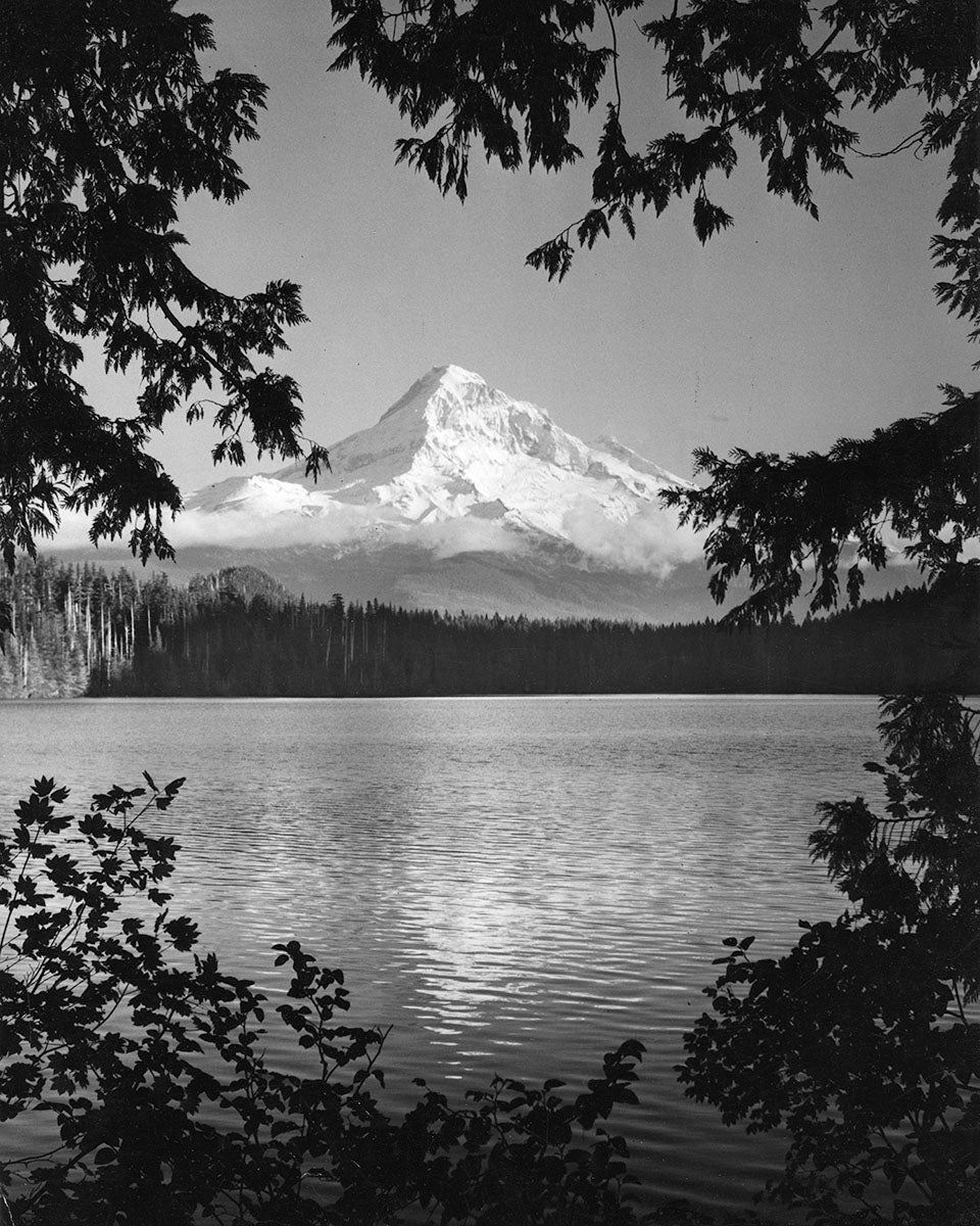 3171E Mt Hood Lost Lake
