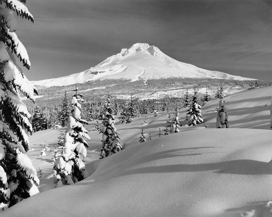 3673A Mt Hood from Ski Bowl