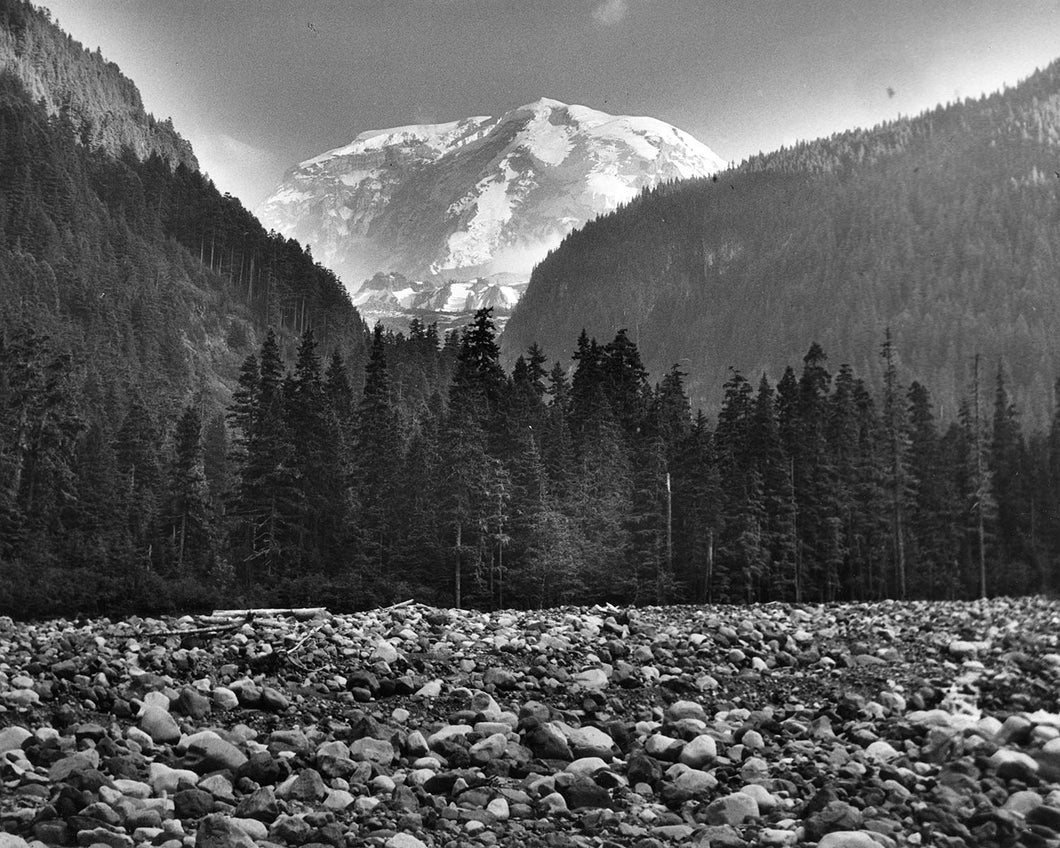 425 Mt Rainier Willis Wall Carbon River