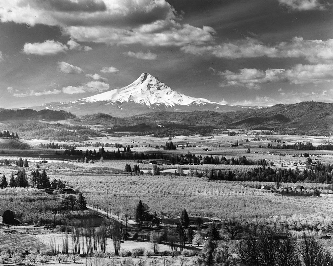 7118 Mt Hood Hood River Valley
