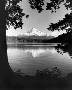 7399 Mt Hood Lost Lake