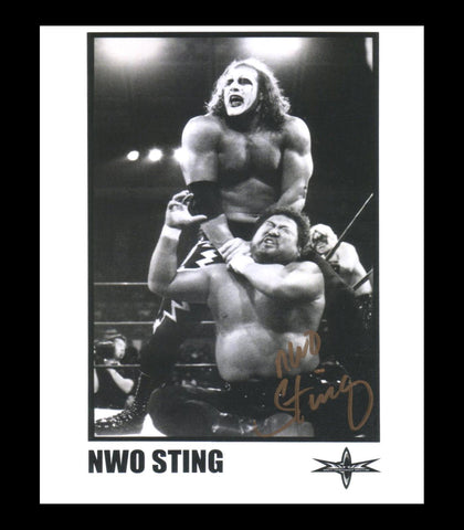 NWO Sting (Jeff Farmer - Sting Imposter) Pose 1 Signed Photo COA