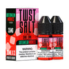 Watermelon Madness 60ML Nic Salt By Twist Salt E-Liquids - E-Juice - Vape Juice