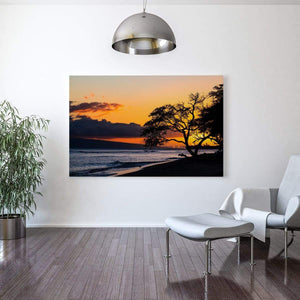 campello vision Photography Tree over sunset