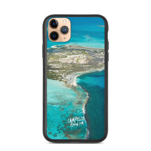 campellovision.com iPhone 11 Pro Max Channel Orchila Biodegradable Campello Vision phone case