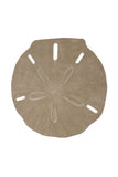 Sand Dollar Drink Table - Coast Lamp Shop