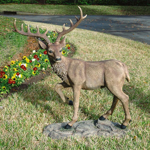 Black Forest Garden Deer