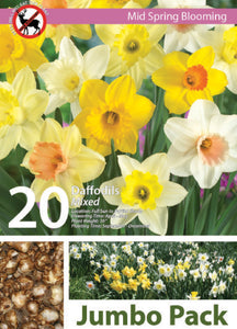 Friend of the Earth Mixed Daffodils Jumbo Packs - Unit #14105