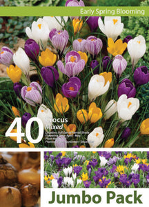 Friend of the Earth Mixed Crocus Jumbo Packs - Unit #14106