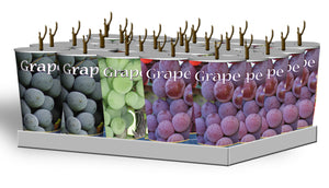 Assorted Grapes in Plastic Containers Unit #15029