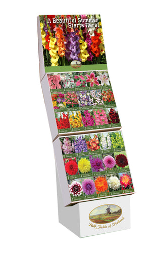 Bulb Fields of Holland Spring Flower Bulb Display in Color Retail Impulse Boxes Unit #15100
