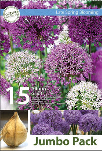 Friend of the Earth Mixed Giant Allium Jumbo Packs - Unit #14107