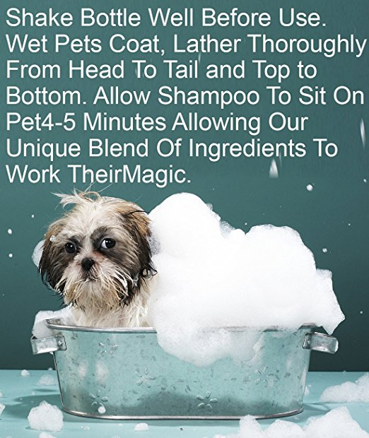 Groovy Pets Sensitive Skin Oatmeal Shampoo for Dogs Soap Free Anti Itch Hypoallergenic Dog Shampoo Gentle