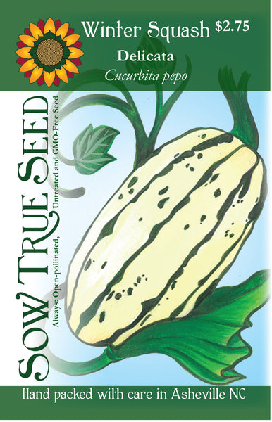 Artist designed packets of Delicata Bush Winter Squash from Sow True Seed Asheville NC.