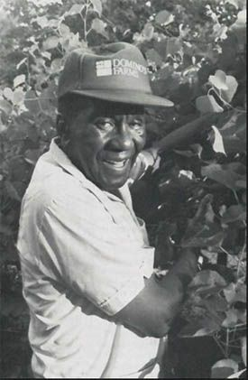 Dr. Booker T. Whatley in the field