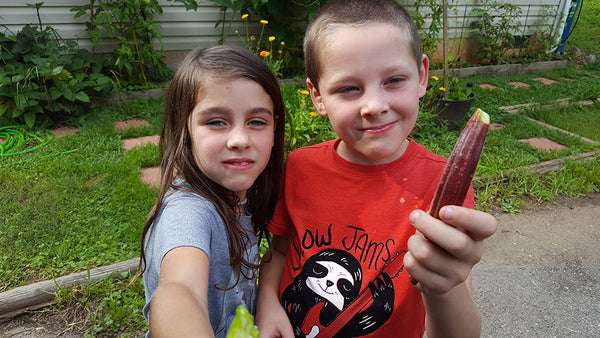 Everyone loves eating okra - even the kids.