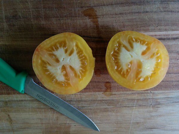 Cut your tomatoes along the equator for easy seed extraction.