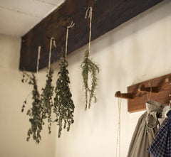 Hang Drying Herbs