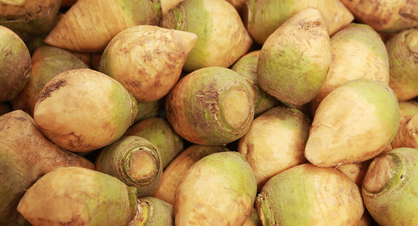 Rutabagas are easy to grow, store well for months, and are sweeter than their more popular cousin the turnip.