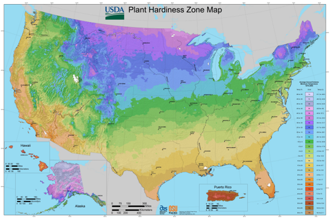 USDA Grow Zone Map