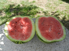 Harvested Watermelon Cut Open