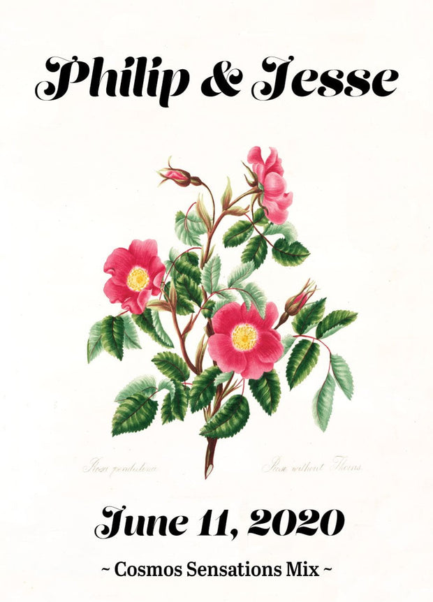 Pre-Designed Template - Thornless Rose - Sow True Seed