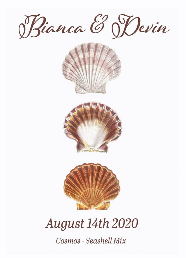 Pre-Designed Template - Seashell - Sow True Seed