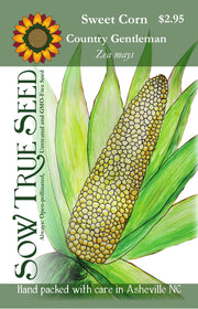 Sweet Corn seed, Country Gentleman, large ear corn, random pattern kernels