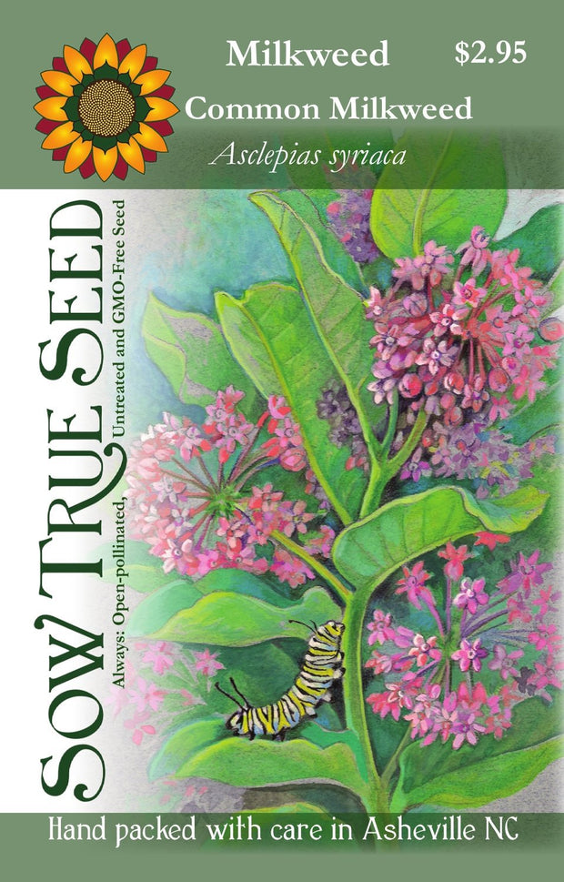 Milkweed seed - Common Milkweed : Pink to red vanilla-scented flowers appear midsummer.