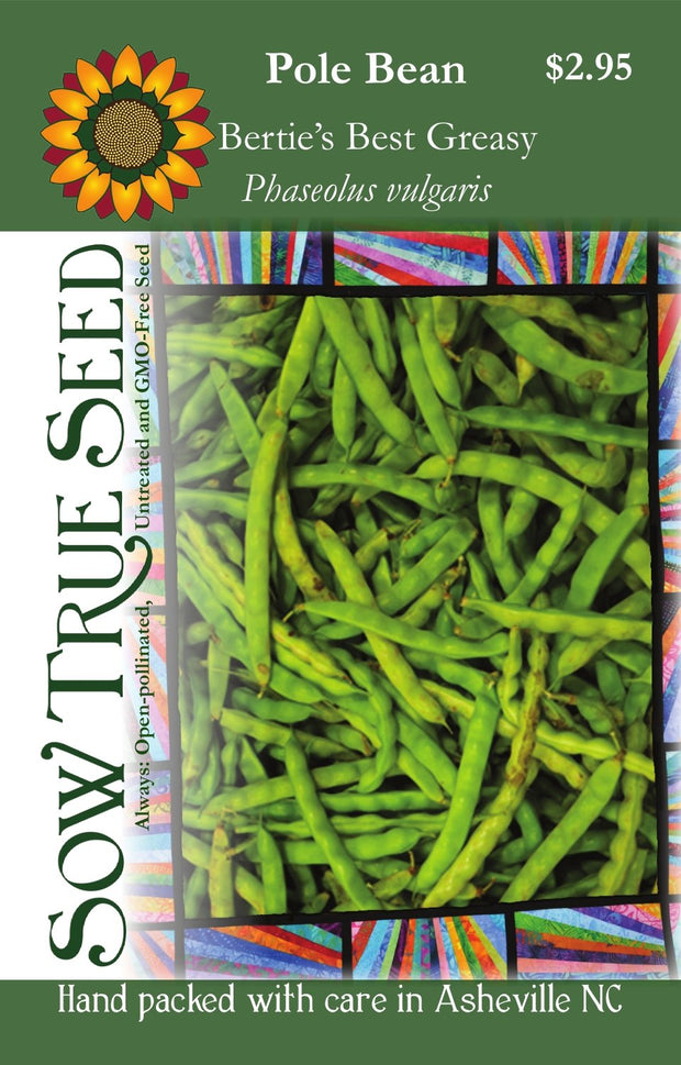 Pole Bean - Bertie's Best Greasy - Sow True Seed