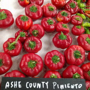 Sweet Pepper - Ashe County Pimento - Sow True Seed