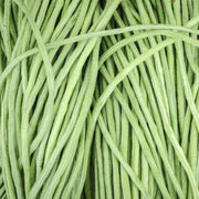 Asparagus Bean - Yard Long Red Seeded - Sow True Seed