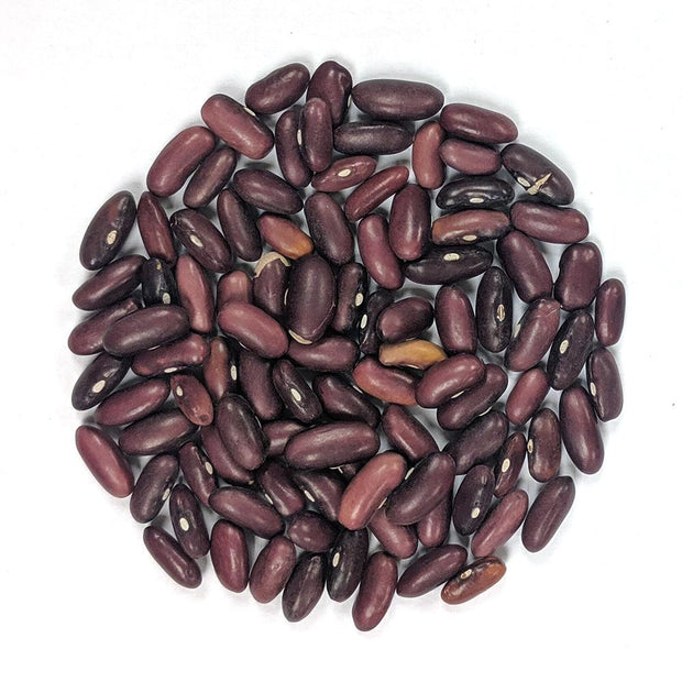 Bush Bean - Kentucky Wonder - Sow True Seed