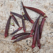 Okra - Red Burgundy - Sow True Seed