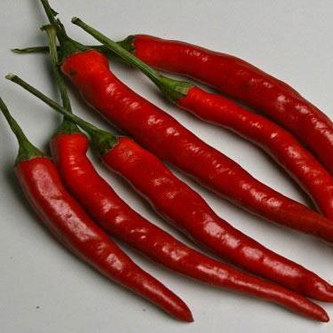 Hot Pepper seeds- Cayenne Long Red Thin: Heirloom hot 4-6