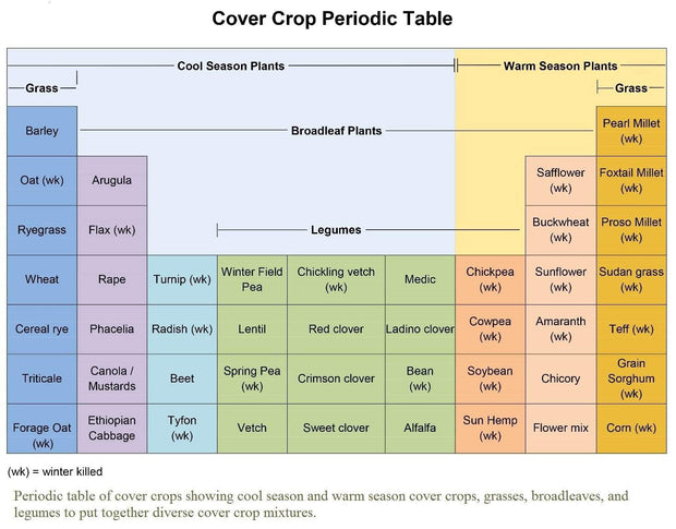 Cover Crop - Over-Wintering Mix - Sow True Seed