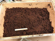 Coco Fiber Potting Soil - Sow True Seed