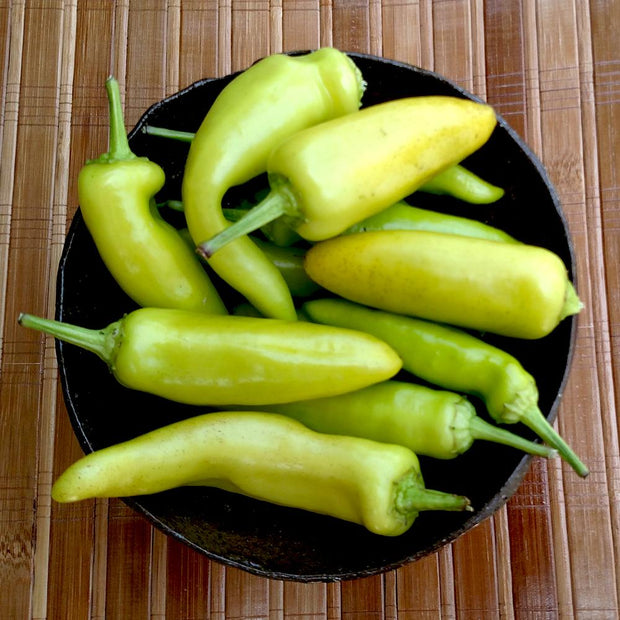 Hot Pepper - Hungarian Yellow Hot Wax, ORGANIC