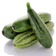 Summer Squash seeds - Cocozelle Zucchini : Heirloom slender fruit with light and dark green stripes.
