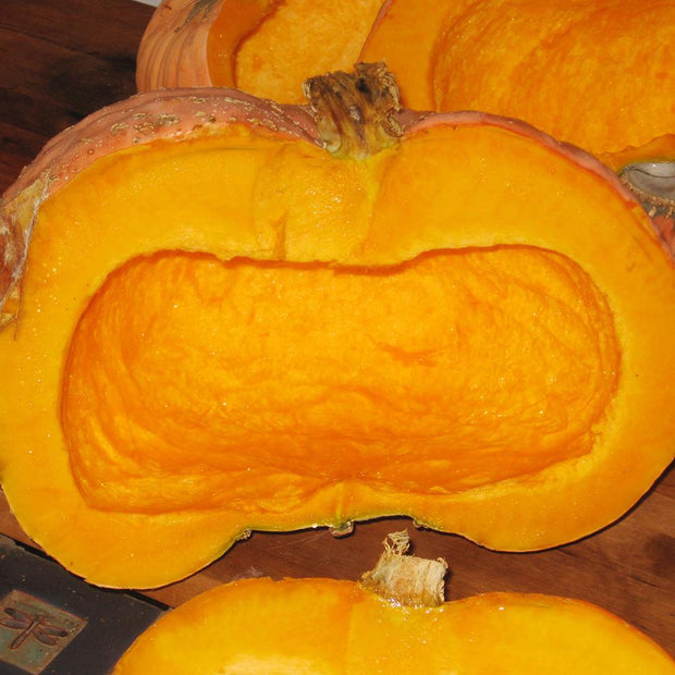 Candy Roaster Heirloom Winter Squash without seeds