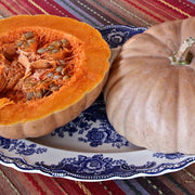 Pumpkin - Long Island Cheese - Sow True Seed
