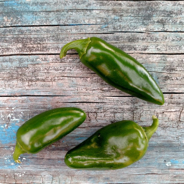 Hot Pepper - Tam Jalapeno