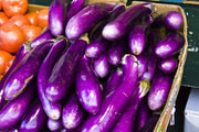 Eggplant - Long Purple - Sow True Seed