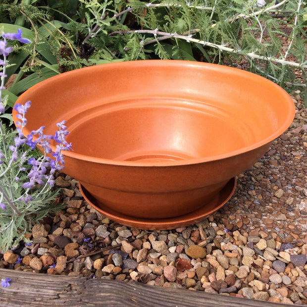 Accessories - Ecoforms - Pot - Large & Low - Sow True Seed