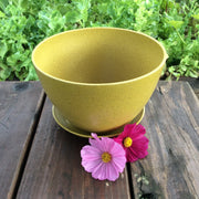Accessories - Ecoforms - Pot - Bowl - Sow True Seed